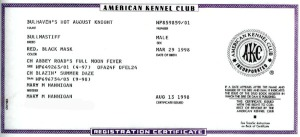 "AKC Registration Certificate, ""Auggie"""